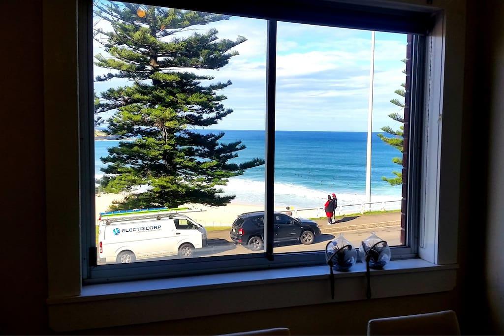 The best view of Bondi Beach