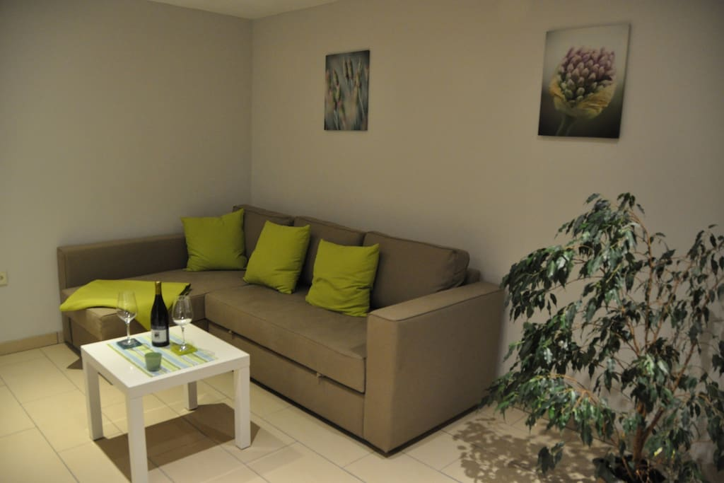 Wohnzimmer mit Ausziehcouch und SAT-TV