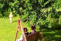 July guests enjoying the yard