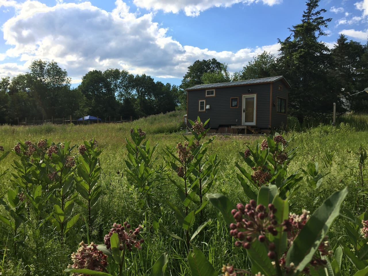 Experience life in our precious Tiny House.