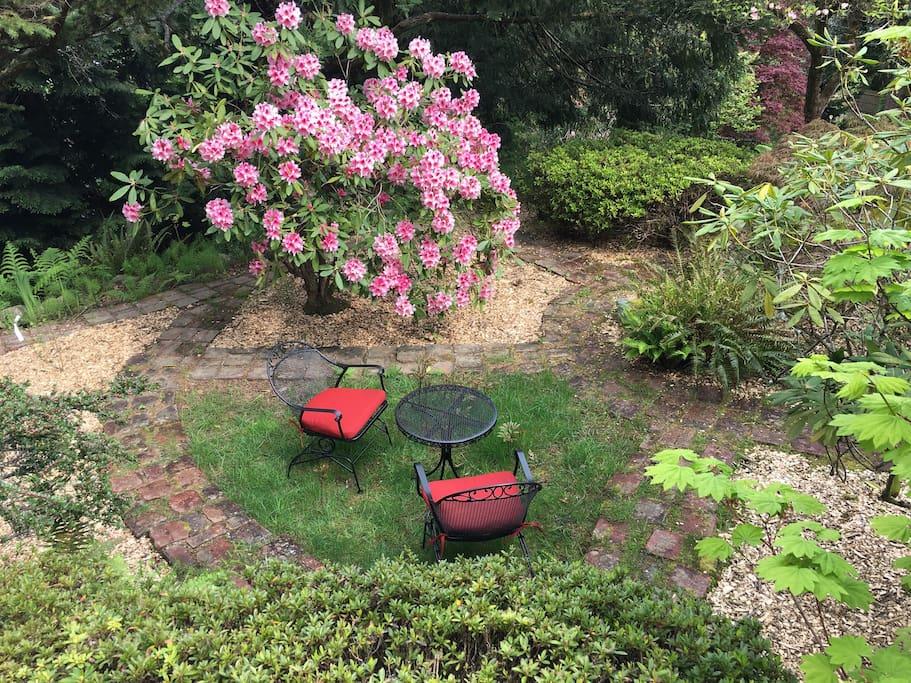 Tea time in the garden!