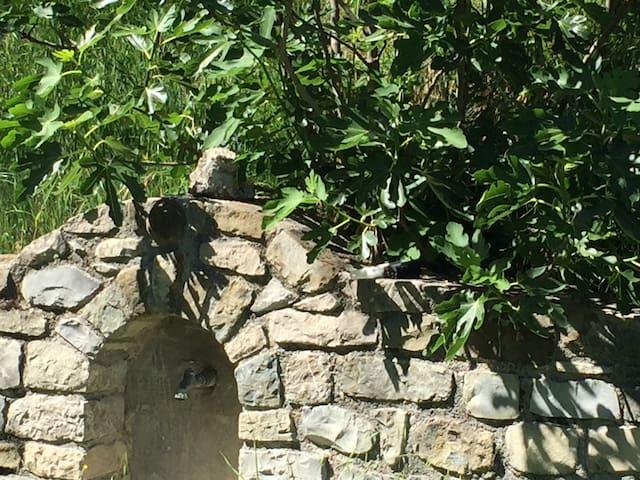 Gite de la Vallée du Flachet - Nyons - Cabaña en la naturaleza
