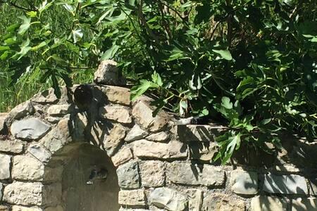 Gite de la Vallée du Flachet - Nyons - Rumah tumpangan alam semula jadi