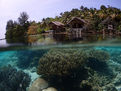 Meos Ambower Raja Ampat Indonesia