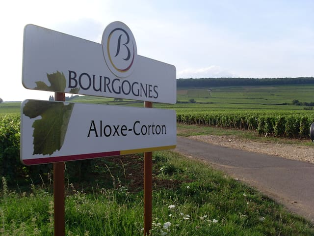 Guidebook for Aloxe-Corton