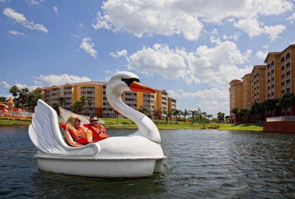 Free Swam boat ride