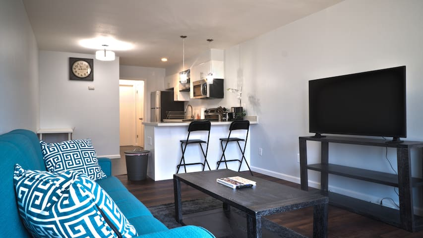 Newly Renovated One Bedroom - Jackson 9