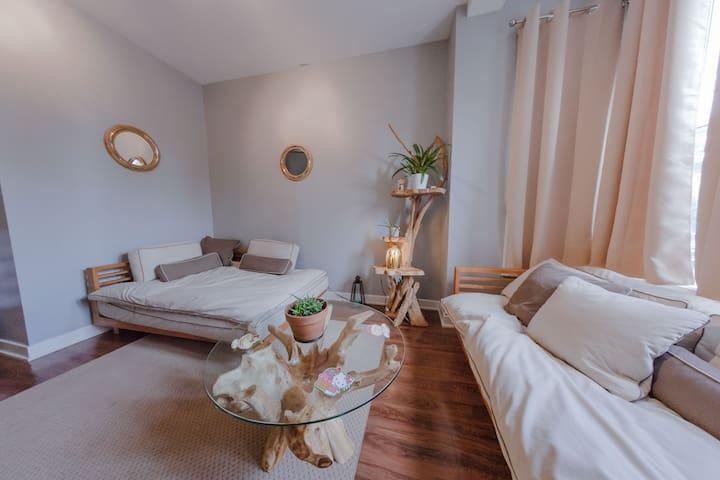4豪華睡房公寓位於芝加哥心臟/Pilsen街。