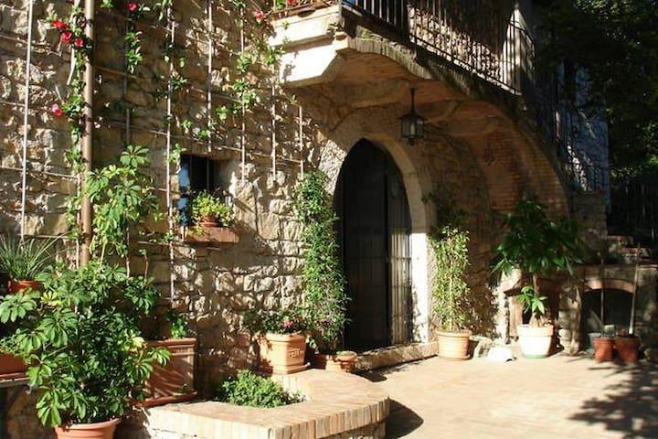 La Ripa di Campo Soriano : La Quercia ( the Oak)