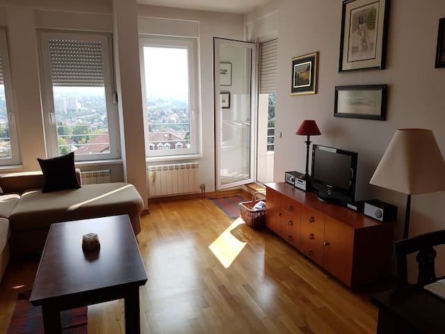 Sunny apartment with a view