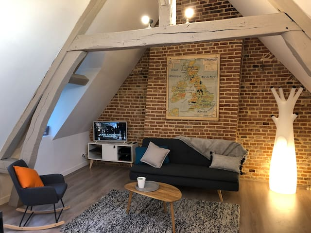 Charming 3 rooms fully renovated near Cathedral