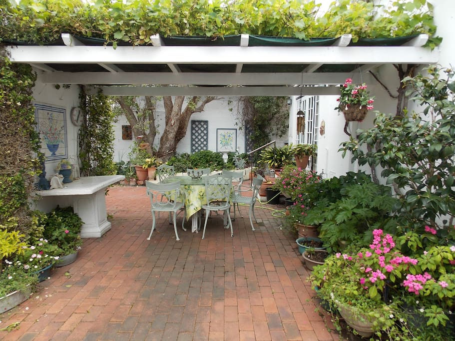 2nd patio with braai under vine covered roof surrounded by lush plants