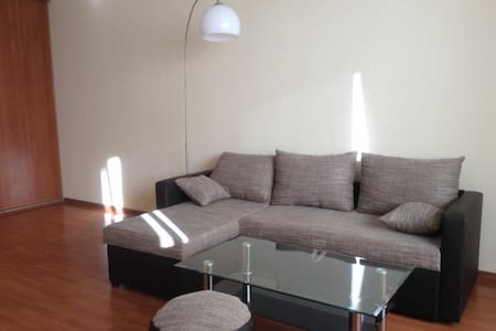 Cosy apartment in quite Riga area - Appartement
