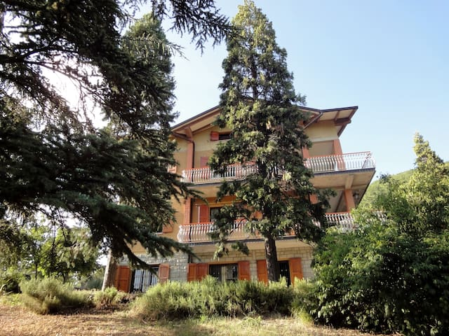 Sunny ground floor apartment. - Castel D'aiano - Apartament