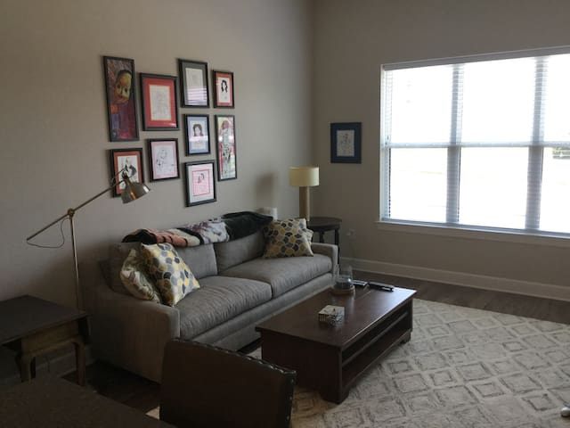 Southend 1 Bedroom 5 minutes from Uptown - Charlotte - Apartment
