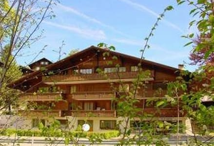 Cozy apartment with parking in Gstaad - 薩嫩(Saanen) - 公寓