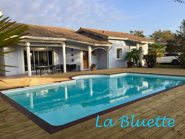 *Bassin d'Arcachon, Welcome at the Bluette*