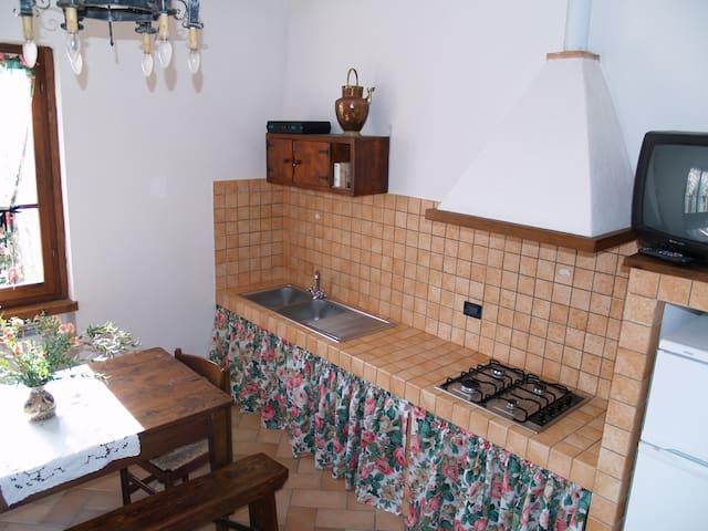 Aratro apartment with shared pool free wifi - Civitella In Val di Chiana - Lägenhet