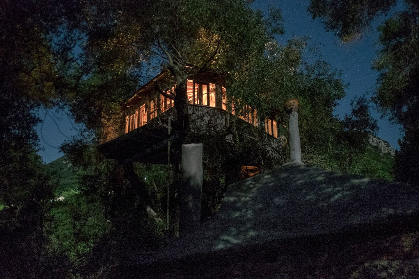 Treehouse by moonlight