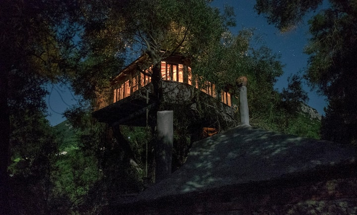 Margaritis's Treehouse(s) - Paramonas