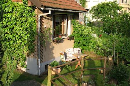 Gemütliche Hütte - Ilmenau - Huis