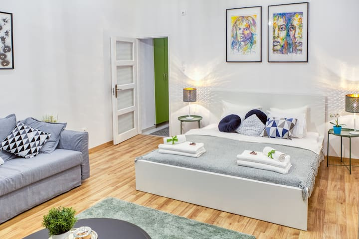 Bright Artsy One Bedroom Apartment  With Netflix