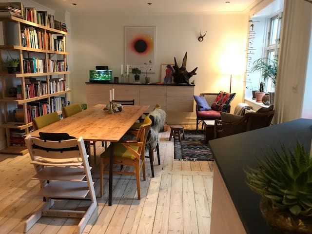 Cozy apartment in the hippest area of Nørrebro