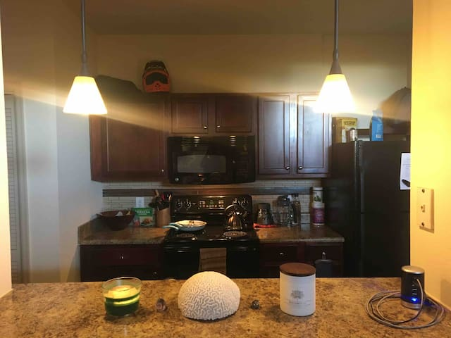 Pet friendly 1bd/1bth apt @Lakeline Metro station