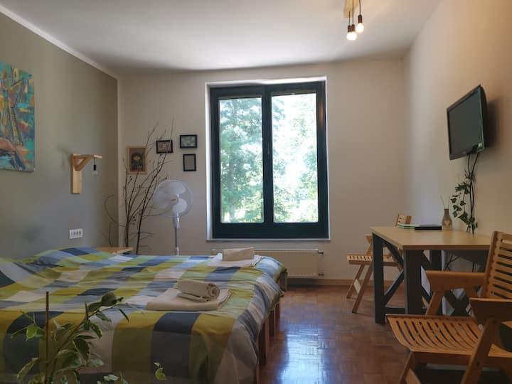 Rooms Žibert 10