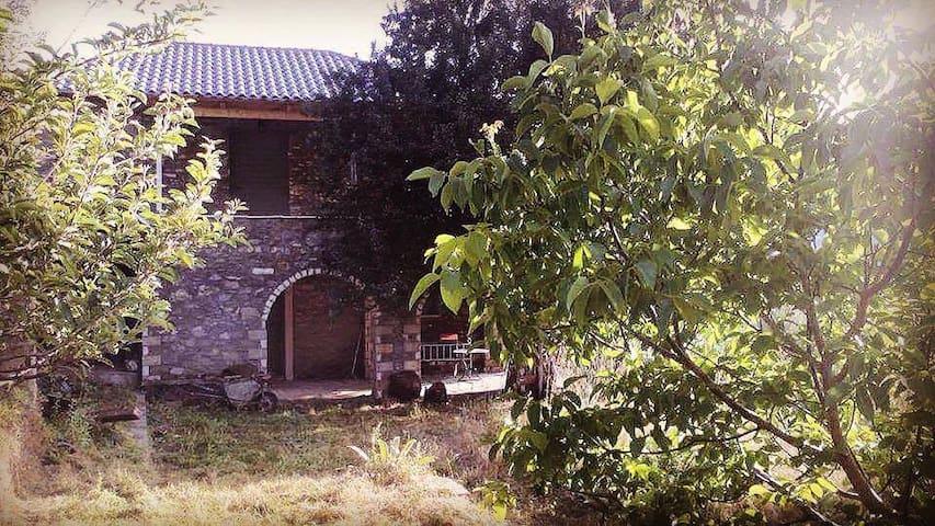 Alagonia Taygetos View - Alagonia - House
