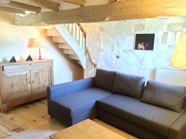 Charmante maison en Loire Valley - Ligré