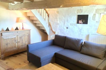 Charmante maison en Loire Valley - Ligré - Rumah