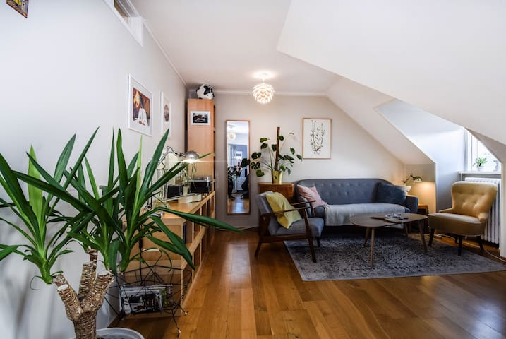 Stylish 3BDR Apartment Close To Downtown Reykjavik