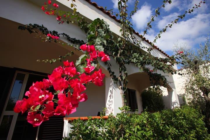 Villa 5 guests - Residence Villantica