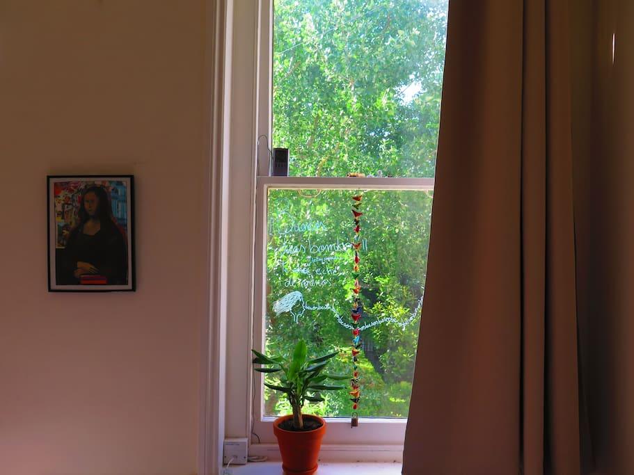 The room´s small window