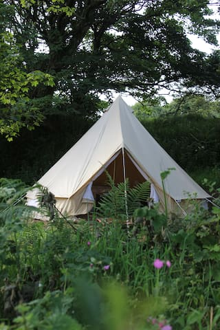 Bell tent Glamping on a Cornish smallholding
