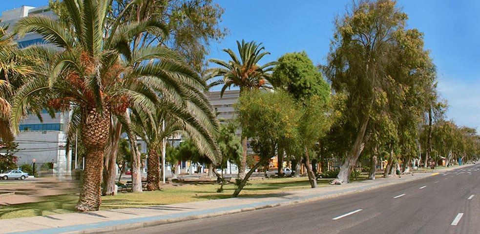Comfortable, good atmosphere, central, good price! - Antofagasta - Vendégház
