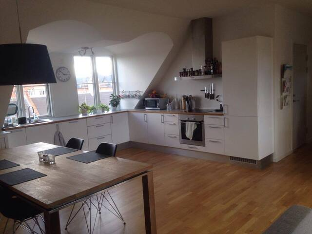 Penthouse offering private room near Airport/Metro - Copenaghen - Bed & Breakfast