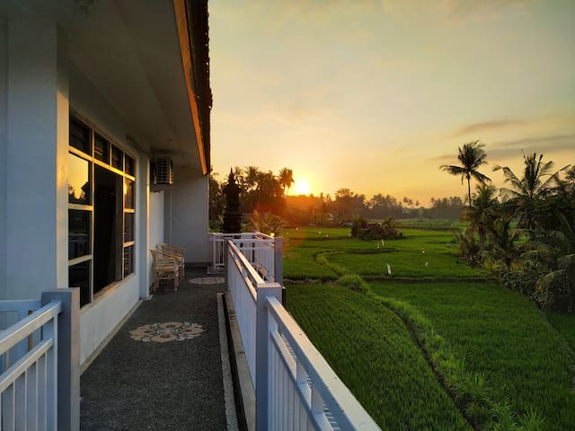 Beautiful Sunset & Rice Field Behind your Room