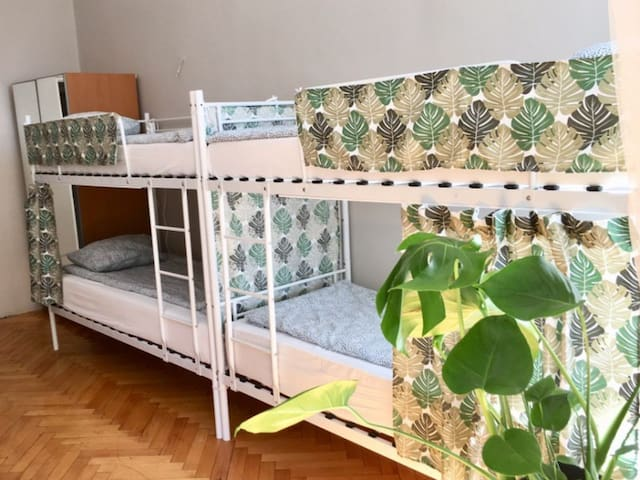 Bed in 8-bed dormitory room. Green House