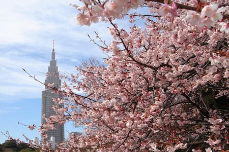 【Cherry Blossoms Area】Beautiful Apt in City for 10 - Tokyo, Shinjuku ku