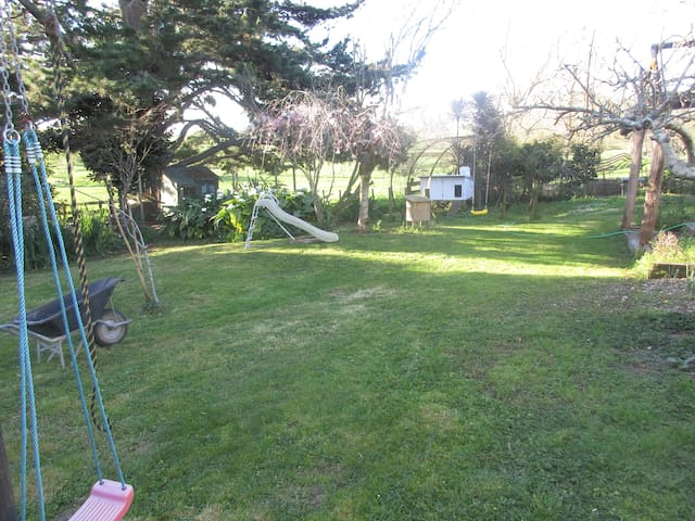 big back yard with chickens and daily fresh eggs