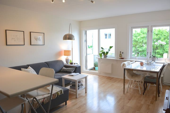 Light, open 1BR apartment with view - Oslo - Byt
