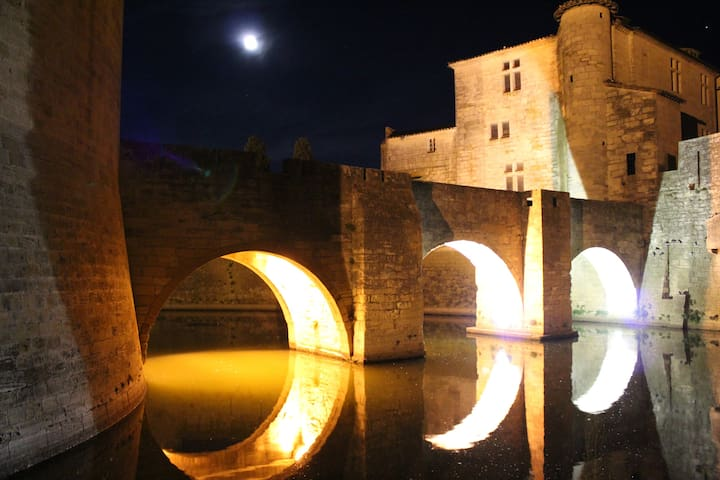 Visitez Aigues-Mortes, situé à 10 minutes du logement.