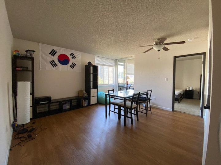 SOMA apartments 1 BR summer sublet