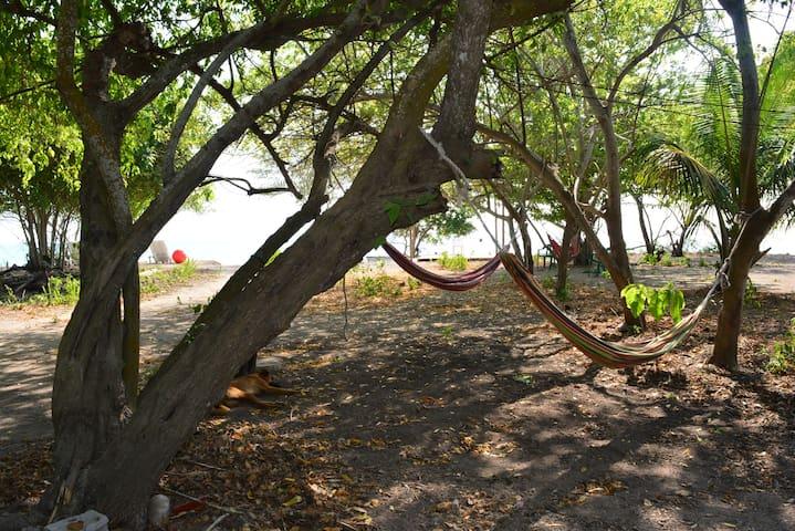 EcoHotel El hamaquero - Islas del Rosario, Cartagena - Остров