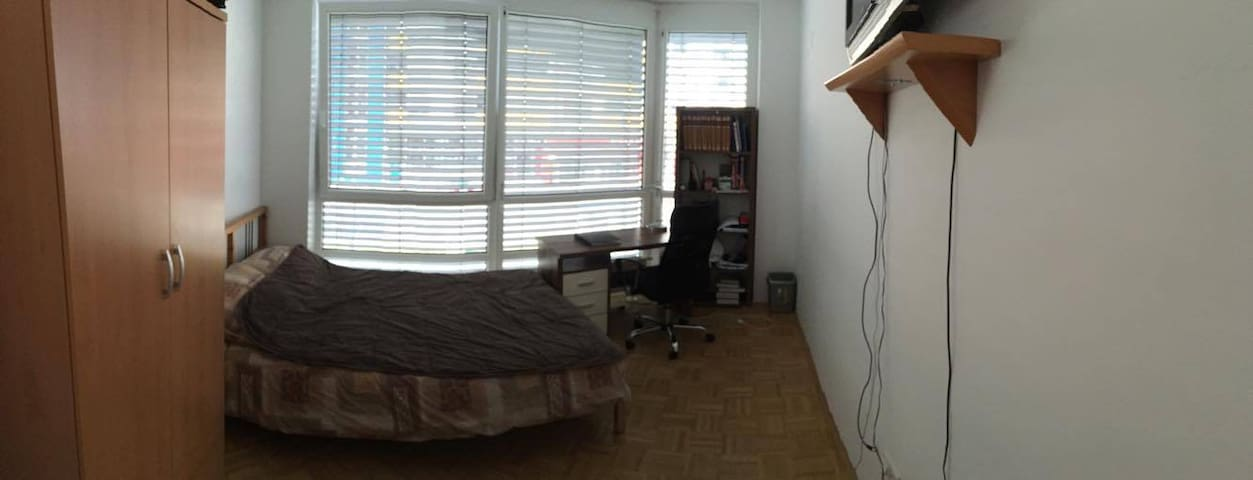 Cozy apartment close to city center+free garage - Maribor - Appartement