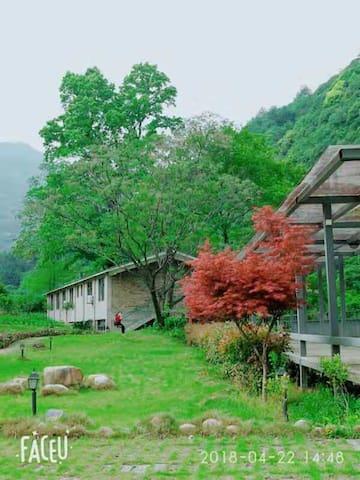 武夷山青丘茶舍