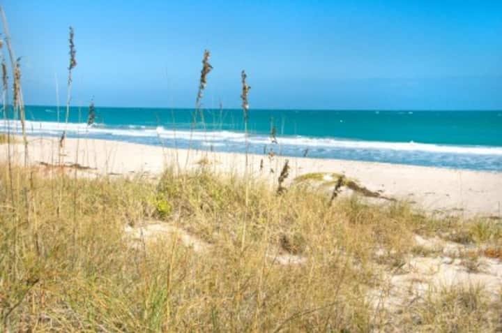 Beach Life by the Gulf !