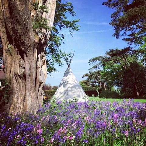 Tipi boutique glamping  weekend - Alfriston - Tipi